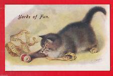 Cat J Salmon Single Collectable Animal Postcards