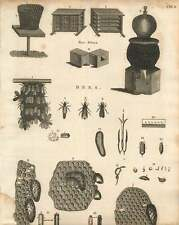 1802  Different Forms Of Beehives These And Honeycomb Copperplate