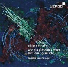 Wie Ein Glasernes Meer Mit Feuer Gemischt, New Music