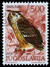 ART PRINT POSTER POSTAGE STAMP YUGOSLAVIA 500 DINAR EAGLE OWL BIRD PREY LFMP0111