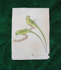 Oriental indian miniature parrot birds company school painting india