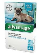 Bayer Advantage Flea Remedy for Dogs Over 55 lbs - 2 Month Supply