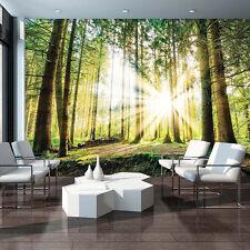 Wald Fototapete Tapeten aus Papier günstig kaufen | eBay