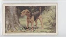 1936 Gallaher Dogs Series 1 Tobacco #12 Lakeland Terrier Non-Sports Card 1i6