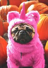 Pug in Pink Unicorn Costume Dog Halloween Card - Greeting Card by Avanti Press