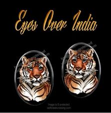 Bengal Tiger Earrings - Wild Cat Wildlife Art - Post Stud Pierced - Free Ship *