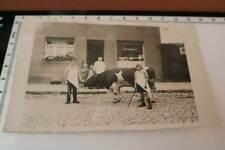 tolles altes Foto - Metzger Otto Schönborn - Jungs mit Kuhbulle Eilsleben 30er J