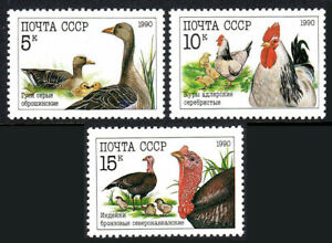 Russia 5909-5911, MNH. Poultry.Geese;Rooster & Hen;North Caucasian turkeys, 1990