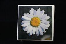 Ceramic Tile Coasters, Photo Tile Coasters, unique photos, homemade, daisy