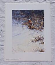 BRUCE LANGTON Brushing the Edge Ring-Necked Pheasant Signed #d Art Print 53/500