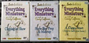 EVERYTHING MINIATURE  CINDY COFFMAN HORSES SHOW PREP 3 DVD SMOKE IN MOTION