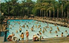 City Park Plunge Pool Anaheim California CA Postcard