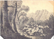 """Eugene Ciceri French Barbizon school Pencil drawing """"Tropical forest"""", signed"""