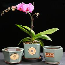 Plant Pot Chinese Ceramic Pots Plant Succulents Bonsai Home Garden Decoration