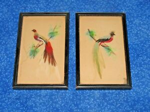Pair Antique Wood Frames Real Bird Feathers & Hand Painted Background Art Deco