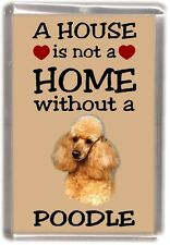 """Poodle (Apricot) Dog Fridge Magnet """"A HOUSE IS NOT A HOME"""" by Starprint"""