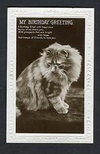 Posted 1927 Birthday Card: Cat: Heaps of Friends to Love You