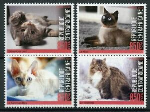 Central African Rep Cats Stamps 2020 MNH Americal Curl Siberian Thai Cat 4v Set