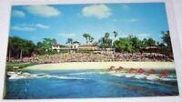 Aquamaids Water Ski Show Cypress Gardens Florida 50's? Chrome Postcard