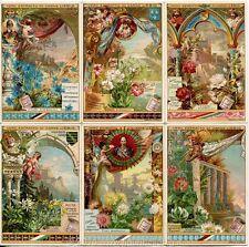 Chromo Liebig Sang. 379 ITA Fiori Simbolici ANNO 1893