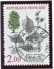 TIMBRE FRANCE OBLITERE N° 2385 FLORE / ULMUS MONTANA