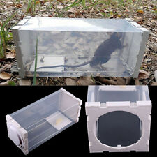 Clear Humane Rat Trap Cage Live Animal Pest Rodent Mice Mouse Control Bait Catch
