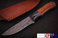 Custom Handmade Damascus Steel Hunting Knife - SK102 (Wooden Handle with Sheath)