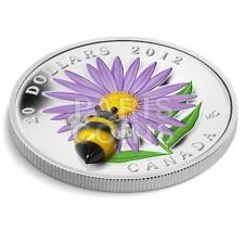 ASTER BUMBLE BEE Venetian Glass Murano Silver Coin 20$ CANADA 2012