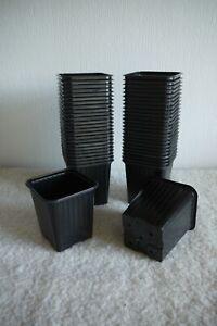 9cm Square Lightweight Ribbed Plastic Plant Pots ( 50 No. )
