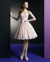 Strapless Short Lace Evening Prom Dress Cocktail Wedding Party Formal Gown New♥