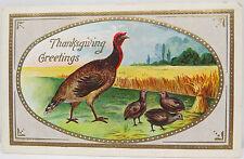 Thanksgiving Half Moon Bay 1911 dinde-états-unis postcard AK carte postale (a2437)