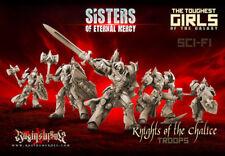 Raging Heroes Sisters of Eternal Mery Knights of the Chalice Troops
