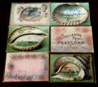 Lot of 6 Vintage Souvenir Shells Seashells Postcards~Early 1900's-b173