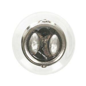 Wagner Lighting BP17916 Tail Light Bulb