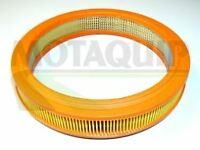 Motaquip VFA189 Air Filter
