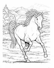 Dover Publications-Wonderful World Of Horses Coloring Book (Dover-ExLibrary