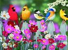 Songbirds And Cosmos 500 Pc Jigsaw Puzzle For Sale