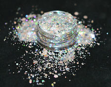 Exclusive Bizzy Nails Cosmetic Grade Glitter Nail Art Dancing Queen Acrylic Gel