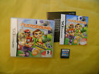 NINTENDO DS GAME: PLAYGROUND-EA-GAMES-MULTILINGUE-ITA-ITALIANO