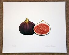 Beautiful botanical limited edition signed print 'Two Figs' by Ann Swan