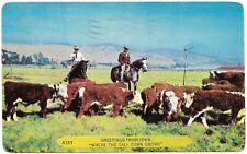 1954 Iowa Cowboys Cows Cattle Horses Burlington IA Authentic Vtg Western Motifs