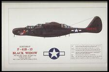 419053 Northrop P 61B 15 Black Widow A4 Photo Print