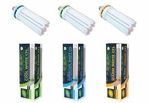 125w 150w 250w CFL Super Cool or Warm Light Bulb Hydroponic Grow EnviroGro Lumii