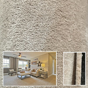 Saxony Carpets 15m Thick Luxury Soft Flecked Lounge Bedroom Shimmer Cream/Beige