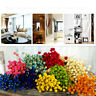 Props Kawaii Happy Flower Dried Flowers Bouquets Real Flower Plant Stems