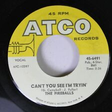 Rock 45 The Fireballs - Can'T You See I'M Tryin' / Bottle Of Wine On Atco Reco 7