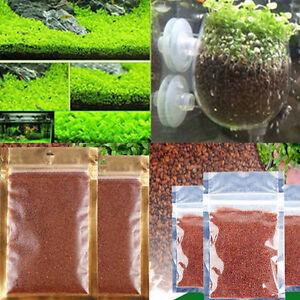 NEW Aquarium Plant Seeds Aquatic Small Leaf Carpet Water Grass Fish Tank Décor