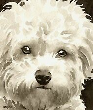 Bichon Frise Art Print Sepia Watercolor Painting by Artist DJR