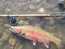 Irideus Salmon Fly Fishing  Reel Large Arbor Steelhead Spey Edition  8wt -10 wt