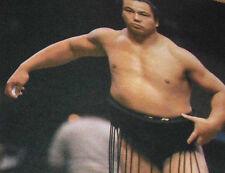 Japanese Gong Magazine 1994 Top 100 Popular Sumo Wrestlers Chiyonofuji Kokonoe